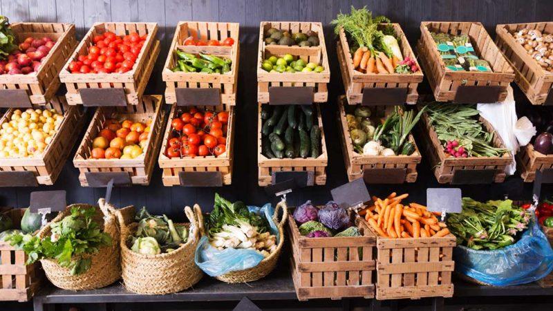 Sustainable Food Economy